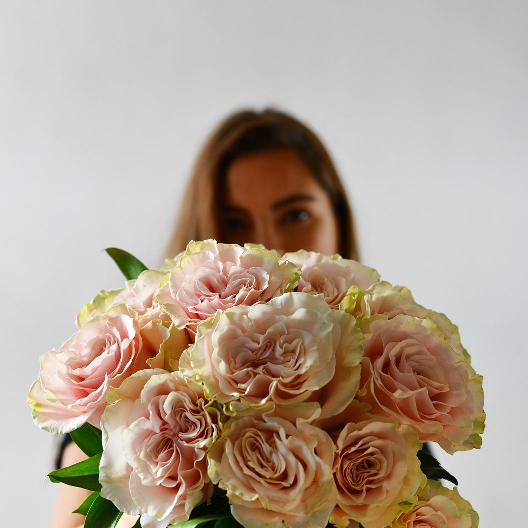 12 Soft Pink Roses