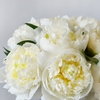 White peonies in a white vase close up