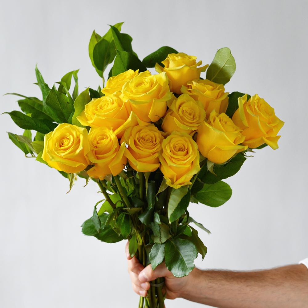 12 Bikini Roses | Westmount Florist Montreal