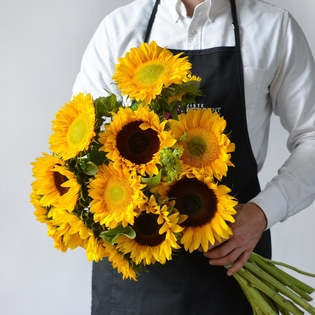 One Dozen Sunflowers