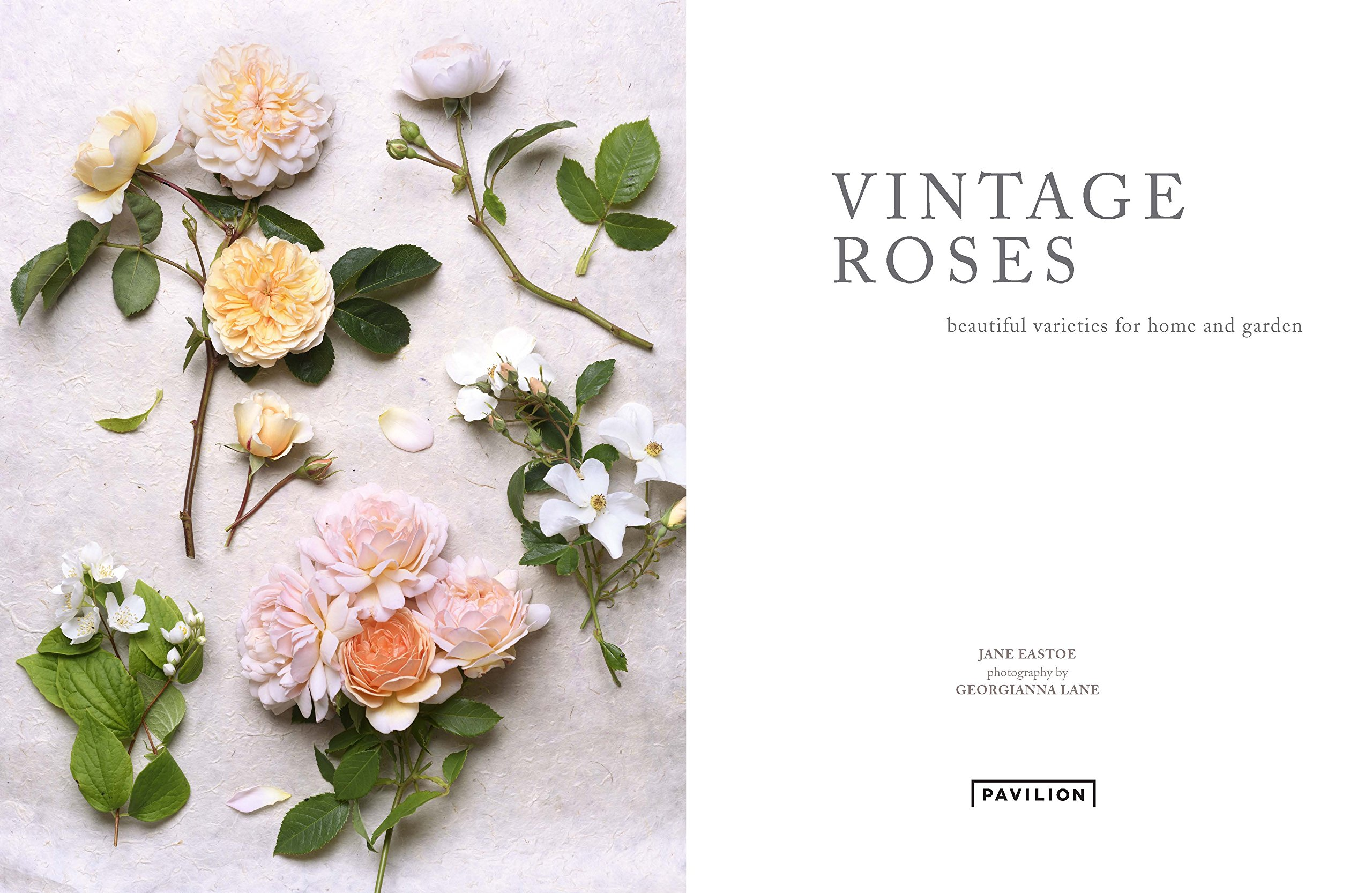Best floral coffee table books